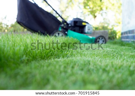 green lawn and lawn mower #701915845