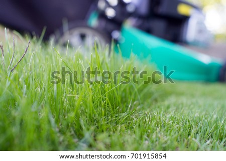 green lawn and lawn mower #701915854