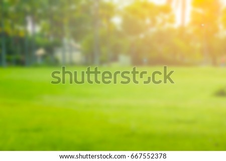 green lawn blurs with golden light at sunset for the background. - Shutterstock ID 667552378
