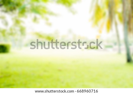 green lawn blurs with golden light at sunset for the background.