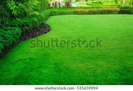 green lawn,garden landscape design #535659094