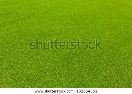 Green lawn grass for golf texture