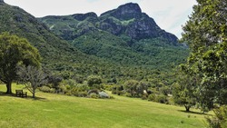 Green lawn on the hillside in the park. There is a bench under a shady tree. There are picturesque tropical plants in the flowerbed. Wooded mountain range against the sky. Cape Town.