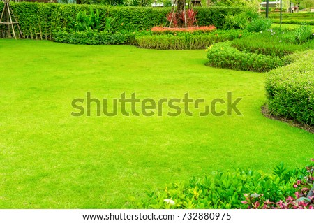 Green lawn, The front lawn for background, Garden landscape design #732880975