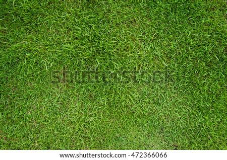 Green lawns texture,background - Shutterstock ID 472366066