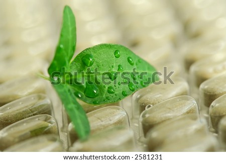 Green leaf and package of herbal supplement pills close up