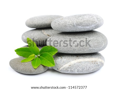 green leaf and zen stones on white