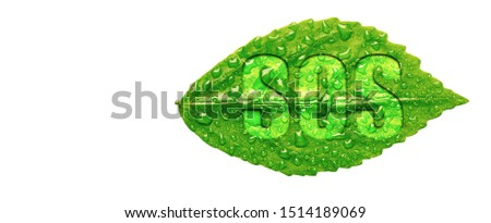 Green leaf cover with water drops and emergency sos code letter on white background, Natural call for help and Last chance to protect our enviroment concept