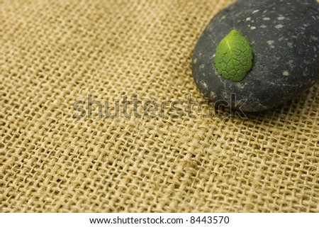 Green leaf on a black stone on a burlap texture. Zen symbol of life and meditation.