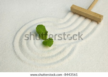 Green leaf on raked white sand of a zen garden. Symbol of life and meditation.
