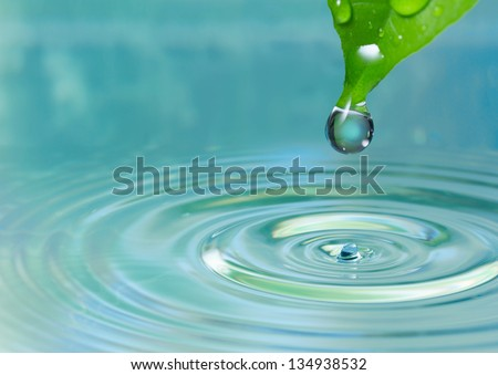 Green leaf with drop on water background
