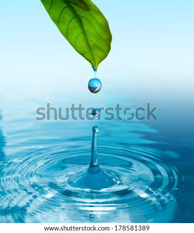 green leaf with water drop ans splash isolated o white