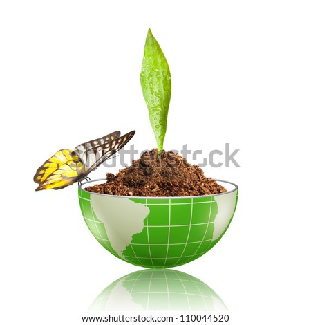 Green leaf, with water drop, glowing on the globe with dirt and butterfly