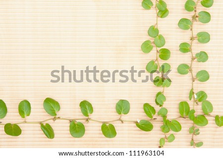 Green leave of grass and brown paper background