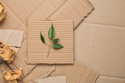 Green leaves and crumpled paper on carton, top view with space for text