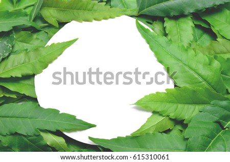 Green leaves are arranged around the text area. #615310061