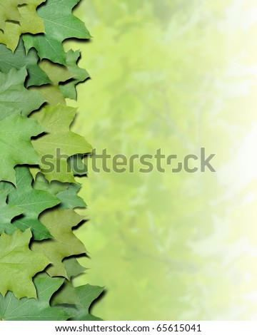 Green leaves are on the side of the photo for a border frame. The other side is blurred to add your copyspace. Use it for a nature or season concept.
