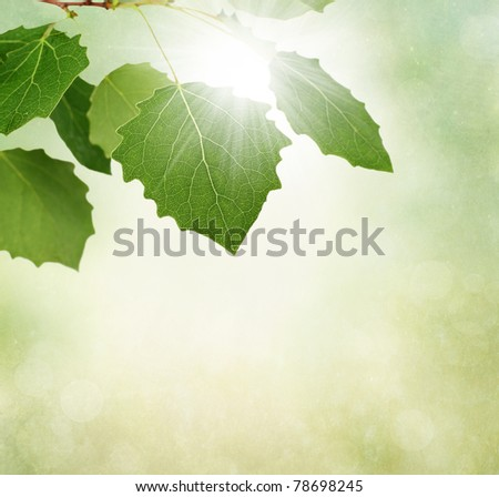 Green leaves border with sun on textured background