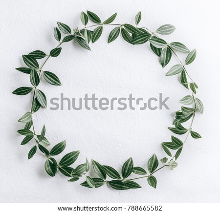 Green leaves circle #788665582