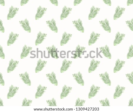 Green leaves isolated objects on the white background for decorative design. Summer plant simple pattern, Simple floral ornament