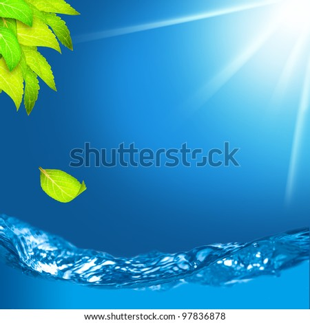 Green leaves with shallow depth of field of water and falling leaf on clear blue sky sunny day