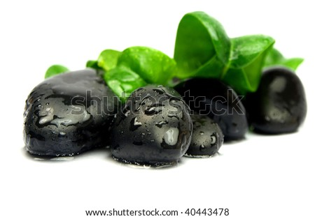 Green leaves with spa stones - stock photo