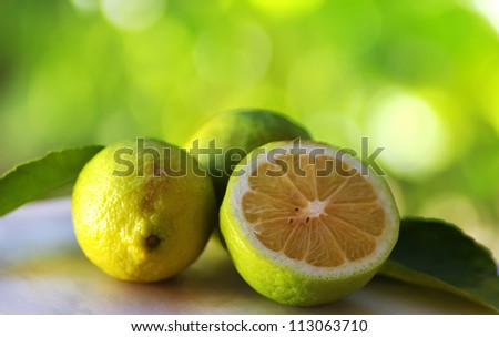 Green lemons on green background