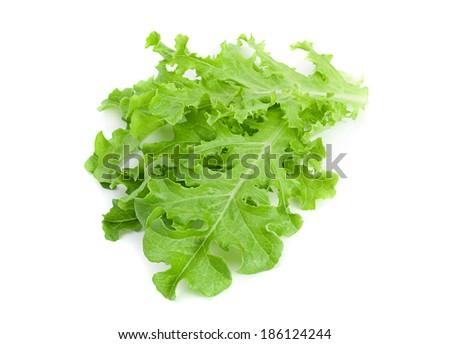 Green lettuce salad fresh leaf isolated on white #186124244
