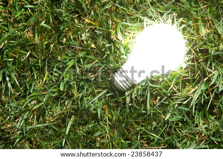 Green Light Bulb glowing in the grass