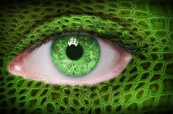 Green lizard pattern on face