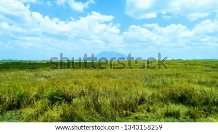 Green lush plains, rivers and dirt roads along Mt. Arayat #1343158259