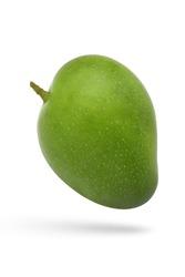 Green mango isolate on white background,fresh green mango, mango