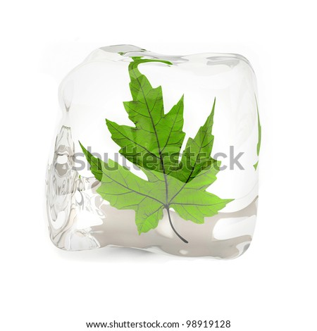 Green maple leaf in the ice cube 3D rendering