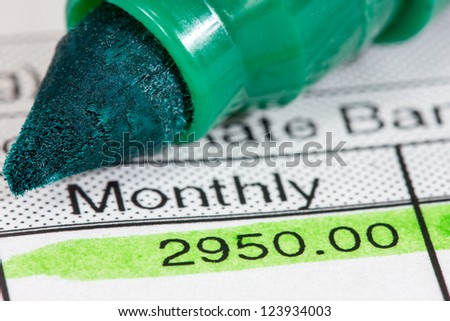 Green marker and  payslip with monthly wage