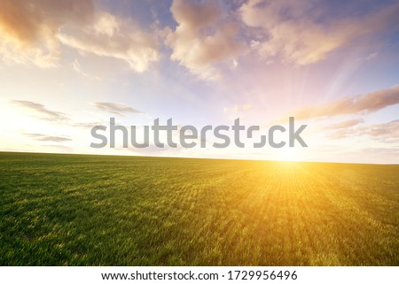 Green meadow and blue sky with clouds and sun with rays. Сток-фото ©