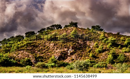 Green meadow and forest under blue dramatic sky with clouds. Landscape with grass field and dramatic sky at sunset. Lovely mountainous countryside in autumn. Colorful forest on a grassy hillside.