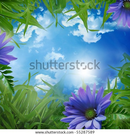 green meadow - beautiful background with flowers