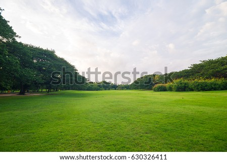 Green meadow grass in the park background with sky with cloud - Shutterstock ID 630326411
