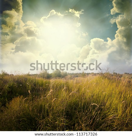Green meadow under blue sky with clouds #113717326