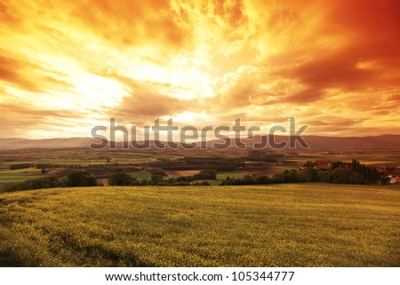 Green meadow under sunset sky with clouds #105344777