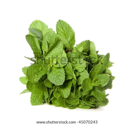 Green mint on white ground