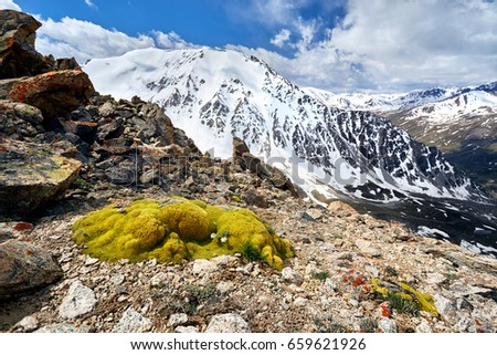 Green moss and Mountains landscape with cloudy sky background #659621926