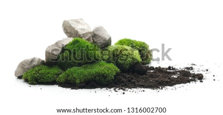 Green moss with dirt, soil and decorative stone, rock isolated on white background #1316002700
