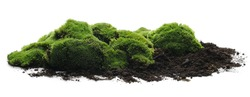 Green moss with dirt, soil isolated on white background