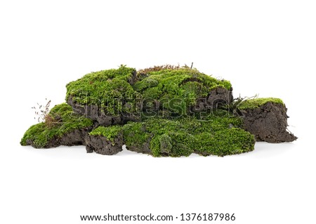Green mossy hill isolated on white background