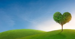 Green mountain with heart shape tree under blue sky. Beauty nature,for good environment.