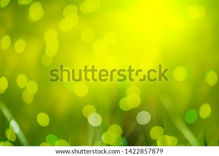 Green natural background photo, merge by double exposure effect with light bokeh. Natural fresh and life inspiration feeling concept.