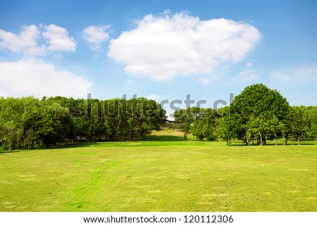 Green nature, landscape