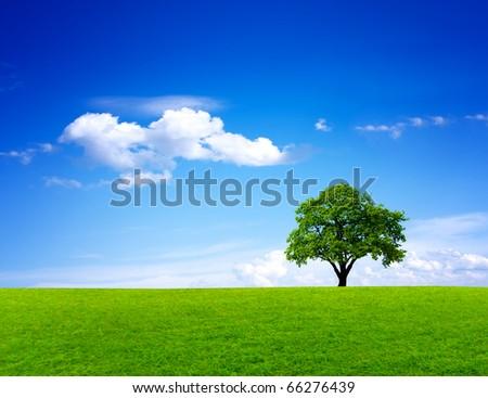 Green nature landscape #66276439