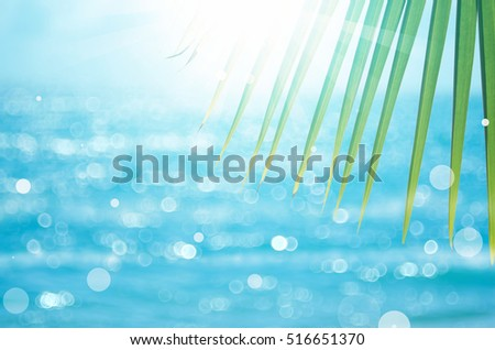 Stock Photo Green nature palm leaf on blur tropical beach with bokeh sun light abstract background. Copy space of outdoor summer vacation and business travel concept. Vintage tone filter color style.